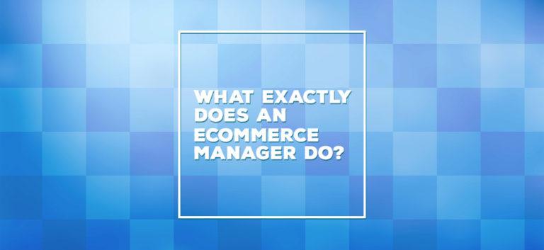 What does an ecommerce manager do?